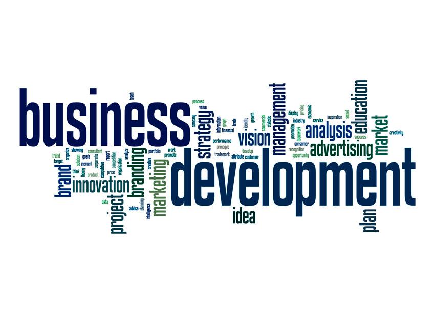 Business Development 1